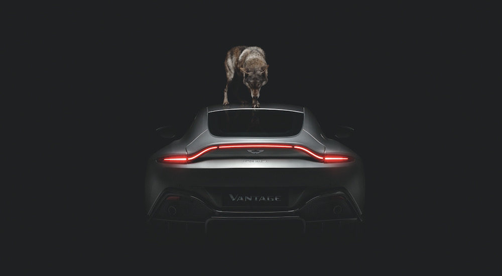 Rankin for Aston Martin Vantage