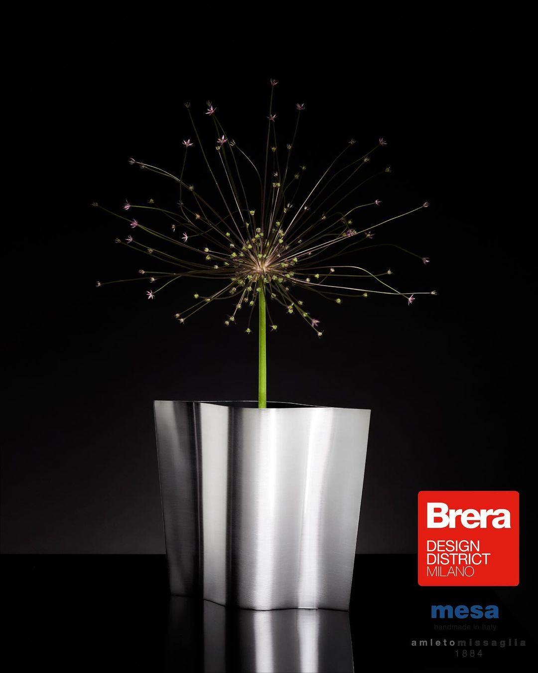 Un foglio d'argento crea la struttura del vaso Mesa della collezione Silverware presentata alla Milano Design Week 2021